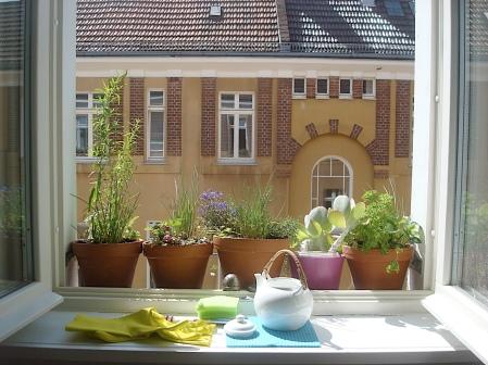 Summer herbs