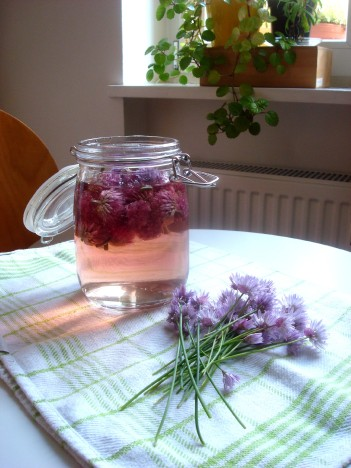 popping the flowers in vinegar as I cut them