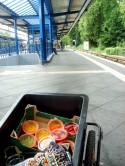 Anhänger - trolley