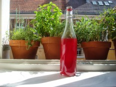 Red Currant infused vinegar