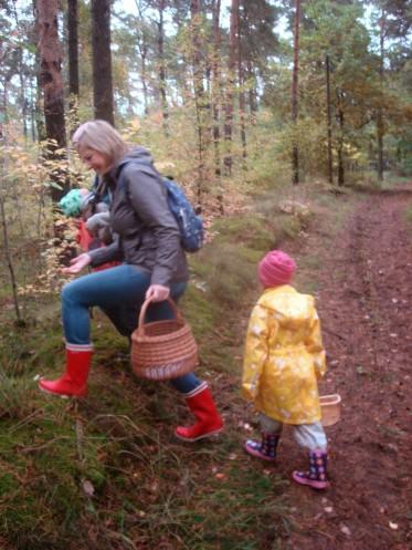 unterwegs-in-den-Wald