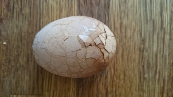tea egg before peeling